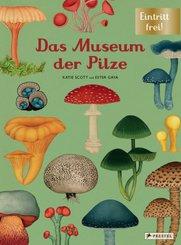 Das Museum der Pilze