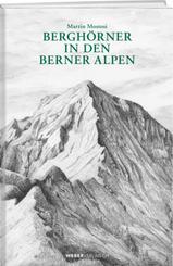 Berghörner in den Berner Alpen