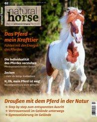Natural Horse 34