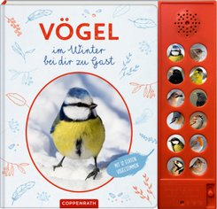 Vögel im Winter bei dir zu Gast