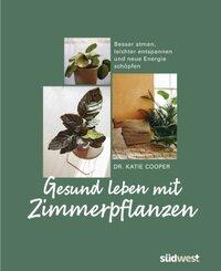 Gesund leben mit Zimmerpflanzen