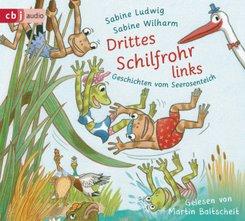 Drittes Schilfrohr links - Geschichten vom Seerosenteich, 2 Audio-CD