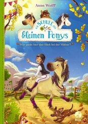 Die Schule der kleinen Ponys
