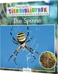 Meine große Tierbibliothek: Die Spinne