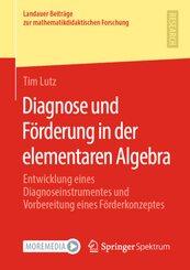 Diagnose und Förderung in der elementaren Algebra