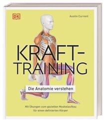 Krafttraining - Die Anatomie verstehen