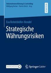 Strategische Währungsrisiken