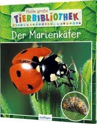Meine große Tierbibliothek: Der Marienkäfer