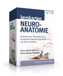 Lernkarten Neuroanatomie