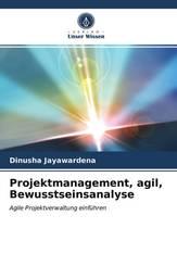 Projektmanagement, agil, Bewusstseinsanalyse