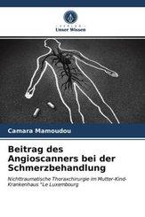 Beitrag des Angioscanners bei der Schmerzbehandlung