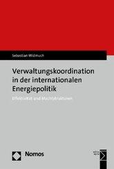 Verwaltungskoordination in der internationalen Energiepolitik