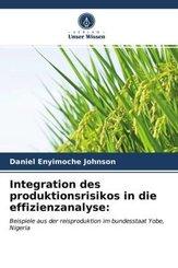 Integration des produktionsrisikos in die effizienzanalyse: