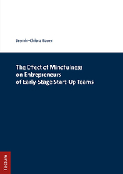 The Effect of Mindfulness on Entrepreneurs of Early-Stage Start-Up Teams