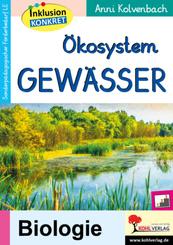 Ökosystem Gewässer
