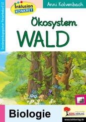 Ökosystem Wald