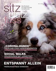 SitzPlatzFuss, Ausgabe 45