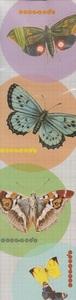 Lesezeichen Schmetterlinge