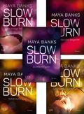 Slow Burn - Die komplette Serie (5 Bücher)