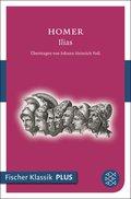 Ilias (eBook, ePUB)
