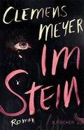 Im Stein (eBook, ePUB)