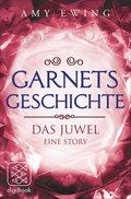 Garnets Geschichte (eBook, ePUB)