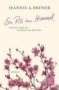 Ein Riss im Himmel (eBook, ePUB)