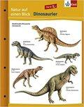 Natur auf einen Blick - Dinosaurier