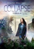 Collapse (eBook, ePUB)