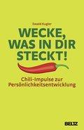 Wecke, was in dir steckt! (eBook, PDF)