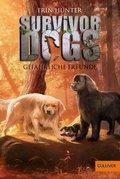 Survivor Dogs. Gefährliche Freunde (eBook, ePUB)