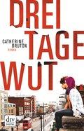 Drei Tage Wut (eBook, ePUB)