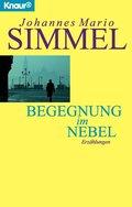 Begegnung im Nebel (eBook, ePUB)