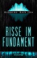 Hamburg Rain 2084. Risse im Fundament (eBook, ePUB)
