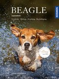 Beagle (eBook, PDF)