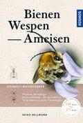 Bienen, Wespen, Ameisen (eBook, PDF)