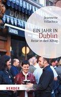 Ein Jahr in Dublin (eBook, ePUB)