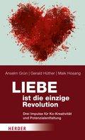 Liebe ist die einzige Revolution (eBook, ePUB)