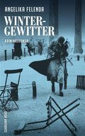 Wintergewitter (eBook, ePUB)