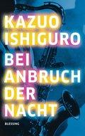 Bei Anbruch der Nacht (eBook, ePUB)