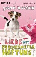 Liebe mit beschränkter Haftung (eBook, ePUB)