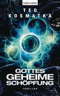 Gottes geheime Schöpfung (eBook, ePUB)