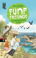 Fünf Freunde auf geheimnisvollen Spuren (eBook, ePUB)