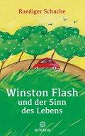 Winston Flash und der Sinn des Lebens (eBook, ePUB)