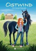 Ostwind - Für immer Freunde (eBook, )