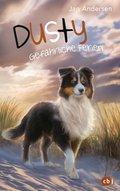 Dusty - Gefährliche Ferien (eBook, ePUB)