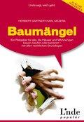 Baumängel (eBook, PDF)