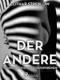 Der Andere - Träumereien eines Schizophrenen (eBook, ePUB)