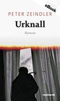 Urknall (eBook, ePUB)
