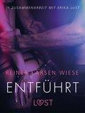 Entführt: Erika Lust-Erotik (eBook, ePUB)